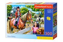 Picture of Castorland puzle Art. B-030095