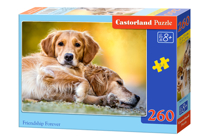 Picture of Castorland puzle Art. B-27361