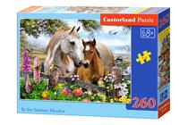 Picture of Castorland puzle Art. B-27309