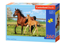Picture of Castorland puzle Art. B-27064